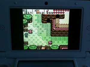 Zelda: Oracle of Seasons Wildnis